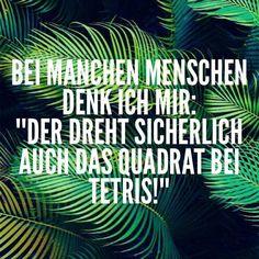 """BEI MANCHEN MENSCHEN DENK ICH MIR:""""DER DREHT SICHERLICH AUCH DAS QUADRAT BEI TETRIS!"""""""
