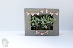 Picture Frame Planter Box. Hobby Lobby has shadow boxes that will work perfectly!