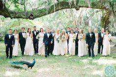 ***Jeremiah will be on peacock duty...***** PATRICK + MEGAN'S MAGNOLIA PLANTATION WEDDING » Aaron and Jillian Photography