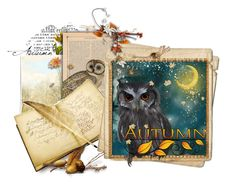 """Owl Inspiration"" by pdunfee ❤ liked on Polyvore featuring art"