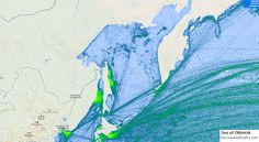 Sea of Okhotsk Marine Traffic, Merchant Marine, Oceans, Maps, Sea, Merchant Navy, Blue Prints, The Ocean, Ocean