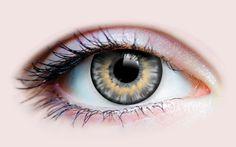 849c0063ead Sunrise Ash – Primal Contact Lenses Meilleures Lentilles De Contact