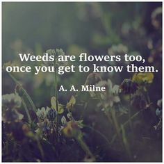 A.A. Milne , love love love this quote, mostly because I've always felt like a weed amongst flowers.
