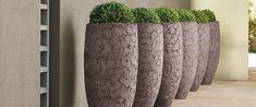 NU Puur & Groen - NU Puur & Groen Concrete, Planter Pots, Exterior, Vase, Terrace, Design, Home Decor, Style, Cement Planters