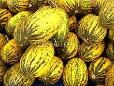 Gelbe Honigmelonen auf dem Wochenmarkt in Istanbul Erenköy im Stadtteil Kadiköy in der Türkei