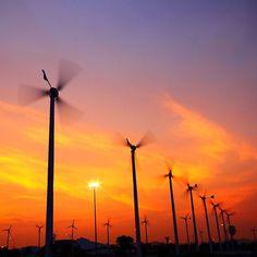 #Windmills in summer #Landscapes #Nature #Kozzi - Dollar Stock Images - http://kozzi.tv/VE7Jb