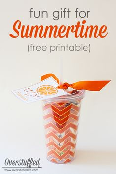 Looking for a cute end of year teacher gift, or just something fun to give your friends to celebrate the beginning of summer? Try this adorable tumbler filled with fun orange things and a fun Orange You Glad It's Summer? Easy Gifts, Creative Gifts, Homemade Gifts, Cute Gifts, Kids Gifts, School Gifts, Student Gifts, Teacher Gifts, Teacher Stuff