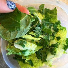 Proud adulting moment: I used basil I grew myself in my salad prep.  #winningatlife #adultingwin