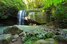 Your Ultimate Guide to Waterfalls and Swimming Holes Near Brisbane - The Ultimate Bucket List Scenery Tattoo, Forest Waterfall, Scenery Paintings, Swimming Holes, Sunshine Coast, Outdoor Travel, Brisbane, Free Images, Beautiful Places