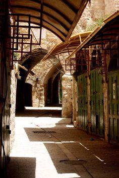 Hebron/ Palestine
