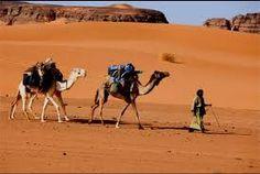 """Résultat de recherche d'images pour """"صحراء الجزائر"""""""