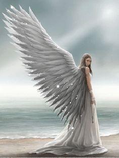 Open wings.gif