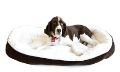 Danazoo's Extra Large Chocolate Bed with Fleece Cream Interior 36' X 48' * Details can be found by clicking on the image.