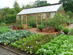 raised beds of veggies! I would love to have this and the green house too...put a big fence around it all with rabbit wire and a gate...