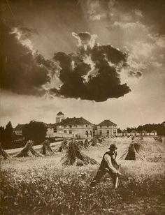 Probably Léonard Misonne (Charleroi 1er juillet 1870 – Gilly, 14 septembre 1943), ca. 1910, Harvest