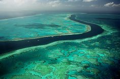 great barrier reef, australia. Be it for work or pleasure, I have to go.