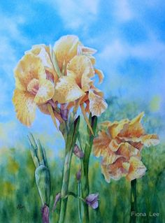 Fiona  Lee   WATERCOLOR...IRIS