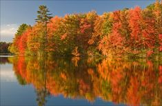 Photo from Oxford County, ME... Maine is a terrific destination for leaf peeping! Here's more info on how to access free Maine foliage updates, starting Sept. 12: http://visitingnewengland.com/blog-cheap-travel/?p=2988