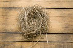 The truth about the 'empty nest'