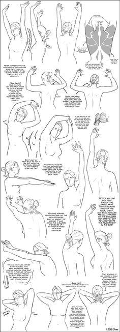 **Tutorial Super: Hands, Feet, Shoulders.
