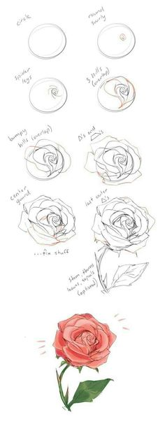 37 Trendy flowers drawing illustration rose - New Tutorial and Ideas Illustration Rose, Art Illustrations, Illustration Styles, Cool Wall Art, Rose Tutorial, Diy Tutorial, Anime Tutorial, Drawing Techniques, Watercolor Techniques