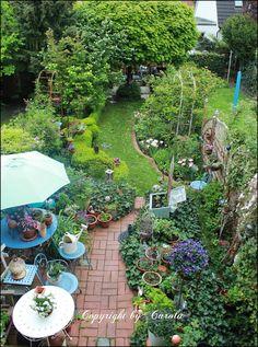 Boxwood Cottage: ~ Happy May garden days ~