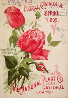 Front cover of 'Floral Catalogue Spring 1895' from 'The National Plant Co.' Dayton, O. With an illustration of Hybrid Tea Roses.archive.org