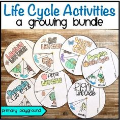 Life Cycle Activities A Growing Bundle Included in this growing bundle are 3…