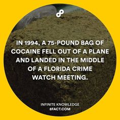 And then it turned into a party (joking). #8fact by 8factapp