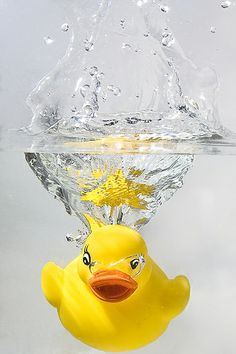 Yellow Rubber Duck Splash