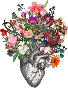 Anatomical Heart And Flowers Clear Acrylic Box by Fleuriosity - 4 X 4 X 3 Anatomical Heart Drawing, Heart Organ, Human Body Art, Picture Tree, Heart Painting, Anatomy Art, Heart Art, Framed Art Prints, Flower Art