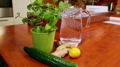 Tukožroutský elixír: jaké suroviny potřebujeme Pickles, Cucumber, Health Fitness, Food And Drink, Drinks, Bar, Lemon, Drinking, Beverages