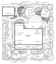 Twenty-Two Ideas for a Low-Care, Low-Cost Landscape -- Figure 23. Plant material for Central Florida