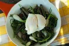 Din Baghave - Humleskud og nye løg med pocheret æg