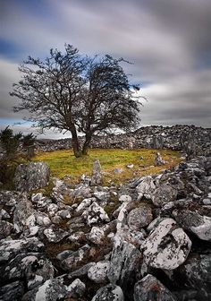 Dun Ruadh Cairn - Also known as the fairy ring by the locals Dun Ruadh is a large circular burial cairn surrounded by a ditch and bank. The cairn is made of a ring of stones with dry walling between them and inside there are 13 cists or burials.