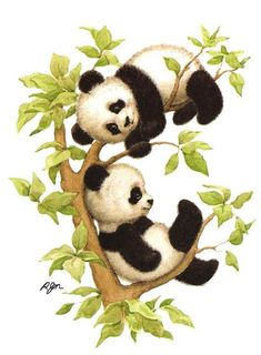 chinese brush painting Baby bears for jungle room. One would be a panda and one a brown bear. Animal Drawings, Cute Drawings, Baby Animals, Cute Animals, Baby Pandas, Baby Bears, Giant Pandas, Red Pandas, Wild Animals