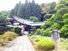Kyoto- Moss temple kokedera
