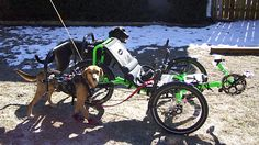 Utah Trikes Custom Dog powered Catrike Villager. (Some how this just doesn't seem right to me)