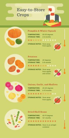 Keeping Your Harvest - Easy-to-Store Crops