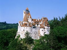 Yes. Dracula's Castle. Yes. I have actually been through it. Yes. It is very cool.