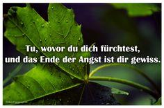 Mein Papa sagt...  Tu, wovor du dich fürchtest, und das Ende der Angst ist dir gewiss.   #Zitate #deutsch #quotes      Weisheiten und Zitate TÄGLICH NEU auf www.MeinPapasagt.de