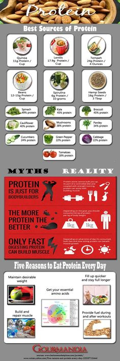 Pro Vegan Health: Funny how this isn't even a vegan infograph, yet all of the highest protein foods are plants. Vegan or not, the truth is the truth. Plant Based Nutrition, Plant Based Protein, Diet And Nutrition, Best Protein, High Protein Recipes, Healthy Recipes, Highest Protein Foods, Ketogenic Recipes, Plant Based Eating