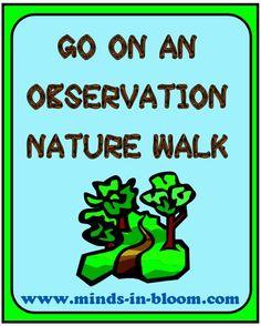 Observation+Nature+Walk.JPG 488×608 pixels
