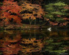 Kioto | María Llorens | Flickr