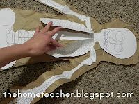 Human Body: Skeleton -- USE THIS printout for the life size activity Primary Science, Science Classroom, Teaching Science, Science Activities, Teaching Kids, Science Fun, Elementary Science, Science Ideas, Classroom Activities