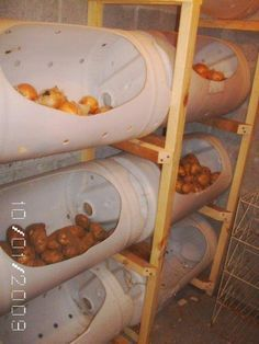 Instant Root Cellar Storage idea! Take PVC piping (or plastic piping of some kind), cut opening and extra ventilation holes and store your produce in the basement.