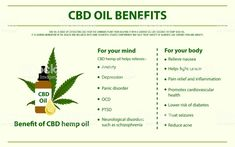 Who's ready to experience CBD Oil benefits? Like, share & 💬 . Best Flower Delivery, How To Relieve Nausea, Oil Safe, Neuropathic Pain, Mood Enhancers, Cbd Hemp Oil, Cannabis Plant, Carrier Oils, Chronic Pain
