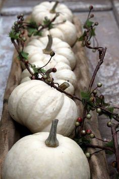 White Pumpkins as a Table Centerpiece home autumn fall decorate ideas pumpkin halloween thanksgiving holidays centerpiece
