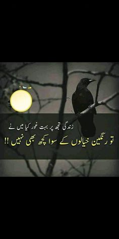 Poetry Quotes, Urdu Poetry, We Movie, Quotations, Novels, Feelings, Words, Heart, Quotes