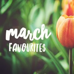 march favourites,  my favourite